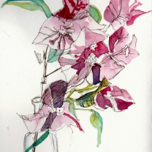 bouganvillea_ink-watercolour_-chinese-vase_ink_carolleebeckx-com-001