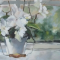 Orchids at Pascale's window - oil on canvas - 385mm x 760mm